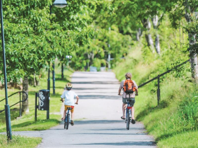 Downtown Campus Bike Ride